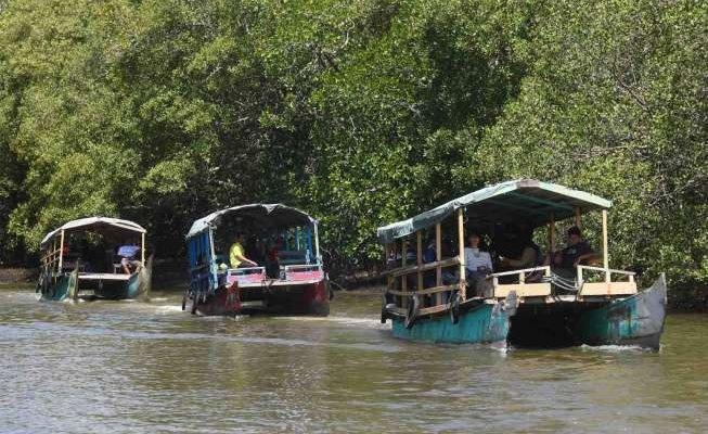 Banyuwangi Trip 2 Hari Ke Djawatan Mangrove Bedul Pulau Merah Dan Api Biru Kawah Ijen Banyuwangi Ijen Travel